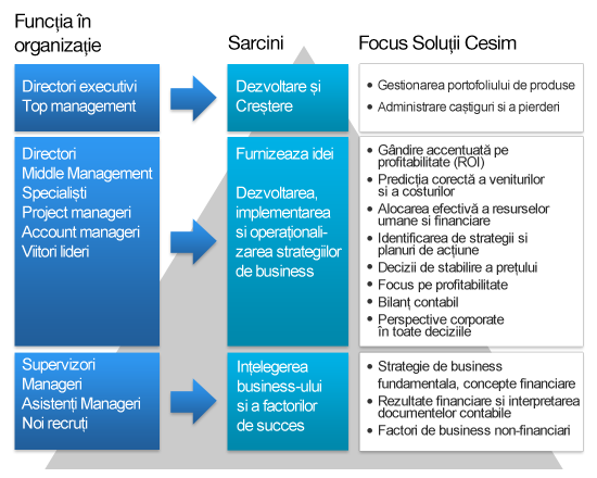 Cesim Corporate Solutions