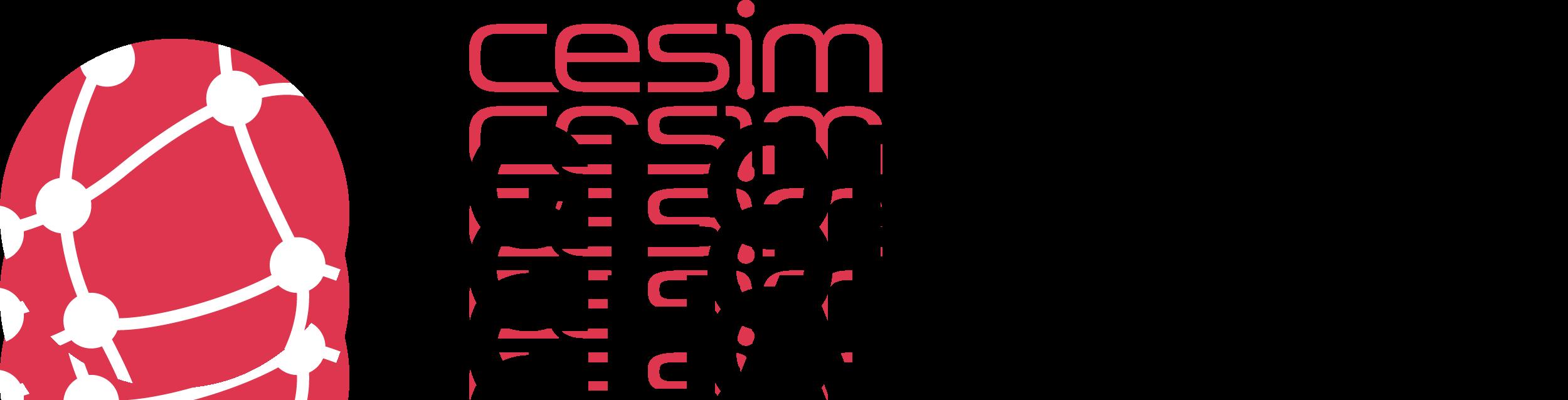 Cesim Global Challenge