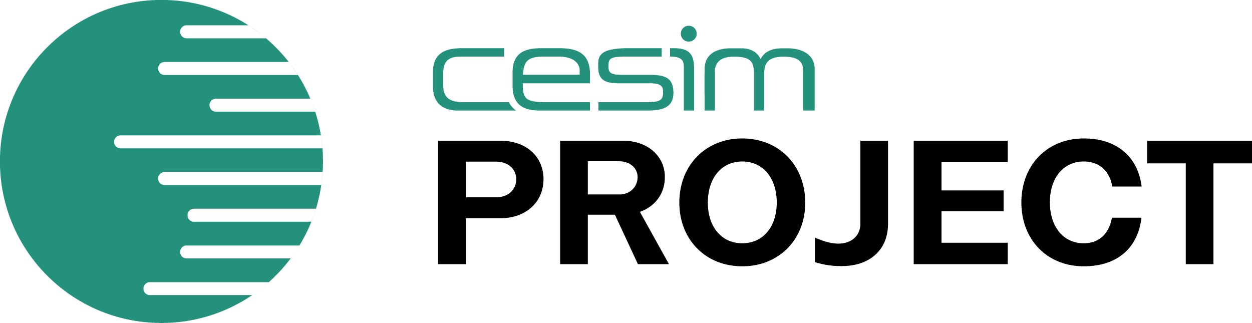 Cesim Project