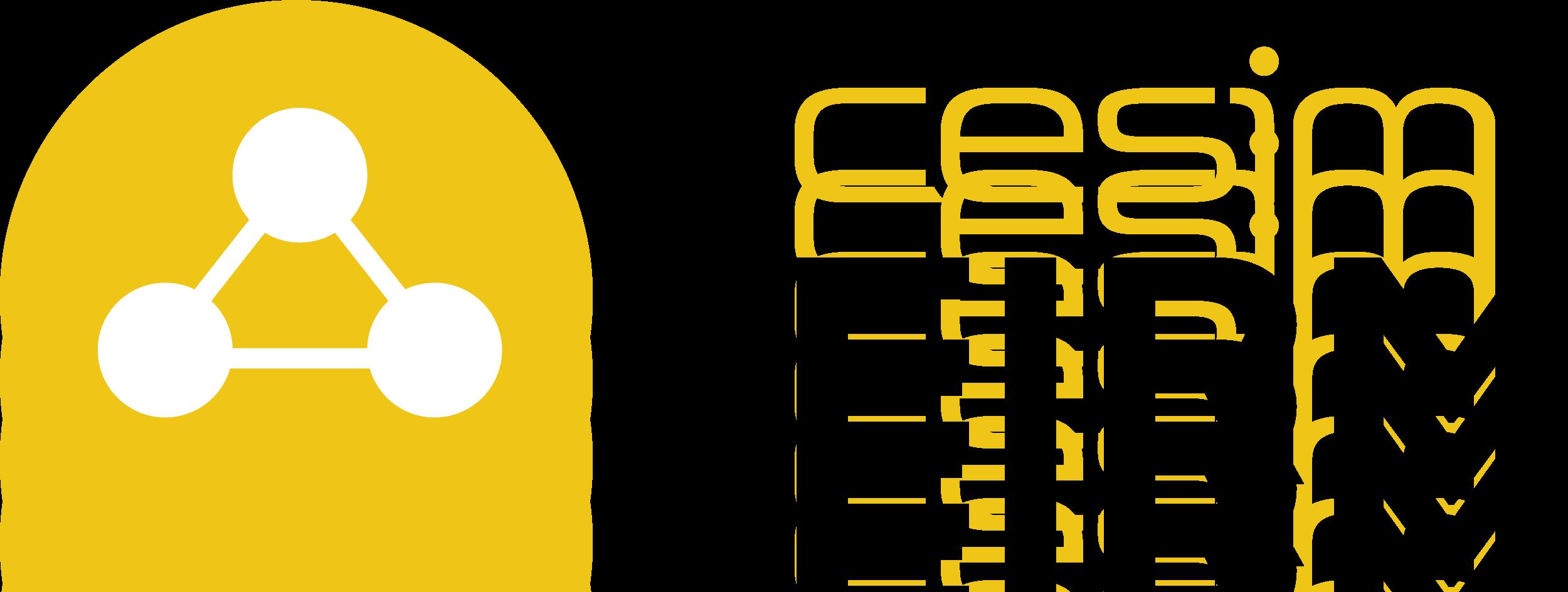 Cesim SimFirm - General management planspiel