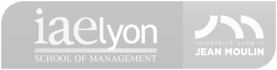 IAE Lyon logo horizontal light gray