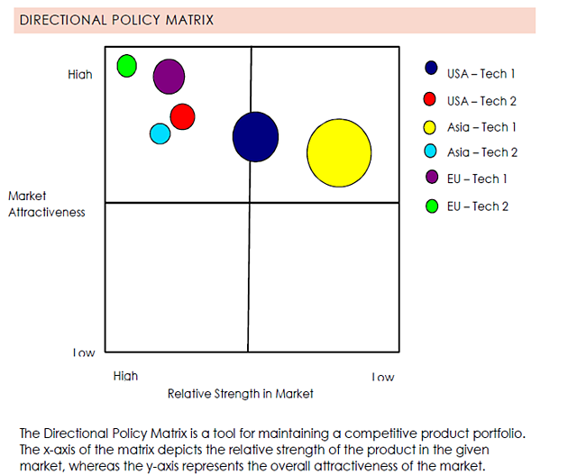 Cesim Global Challenge Directional Policy Matrix